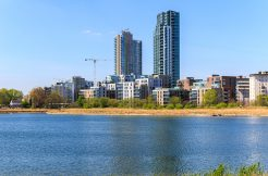Help Save Woodberry Wetlands!